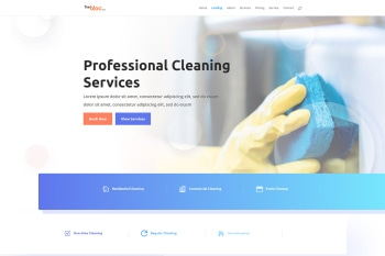 Cleaning Company Demo